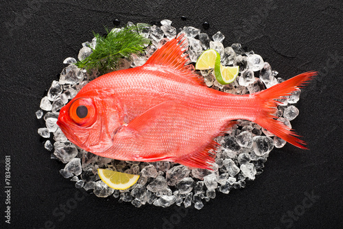 Fototapeta Red palometa fish on ice on a black stone table top view