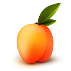 Ripe isolated peach fruit