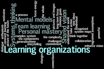 Learning organizations 05
