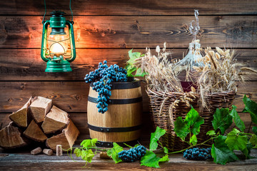 Ingredients for homemade red wine