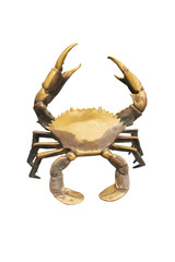 Bronze crab