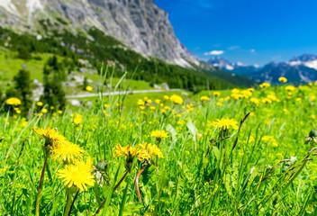 Stunning alpin landscape in summer season, Italian Dolomites