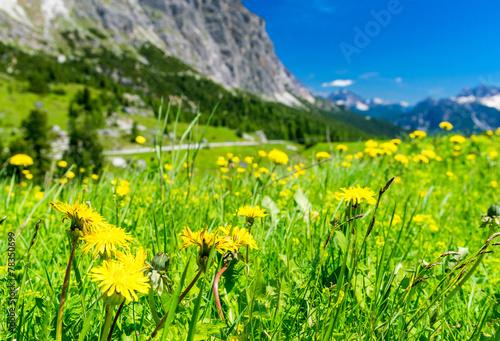 Stunning alpin landscape in summer season, Italian Dolomites © jovannig