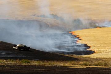 Agriculture Worker Burns Plant Stalks After Harvest Ground Fire