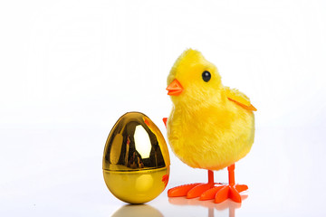 Easter egg and a toy chick
