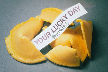 Fortune Cookie Your Lucky Day