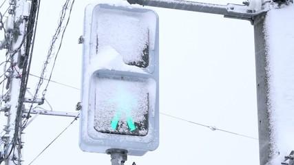 雪が積もったLED歩行者用信号