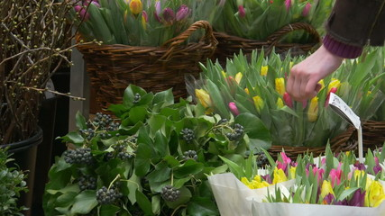Tulips and flowers in Amsterdam