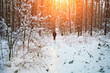 canvas print picture - Man walking in snowy forest