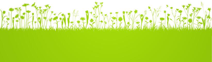 Blumenwiese Hintergrund