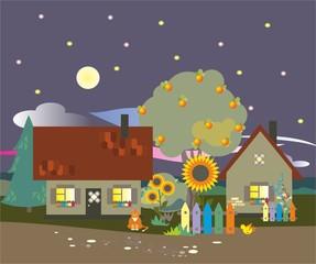 Деревня летом ночь