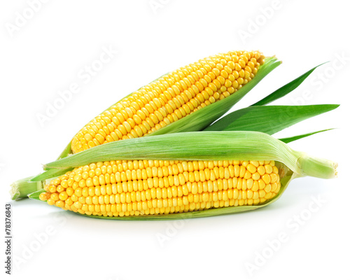 corn © atoss
