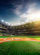 Professional baseball grand arena in sunlight - 78377229