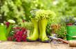 Outdoor gardening tools on old wood table - 78377840