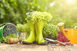 Outdoor gardening tools on old wood table - 78377861
