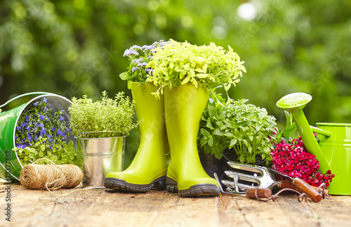 Outdoor gardening tools on old wood table - 78377868