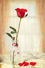 Red Rose In Bottle