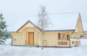 birch and the wooden house in snowfall to Moscow
