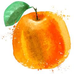 Orange vector logo design template. food or fruit icon.
