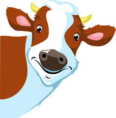 cow peeking  - vector illustration
