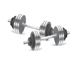 Dumbbells, weights, vector, illustration