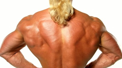Close up of bodybuilder muscular back on white background
