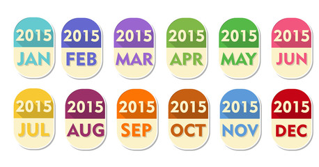 year 2015 with twelve months labels