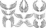 Fototapety Illustration of wings collection set
