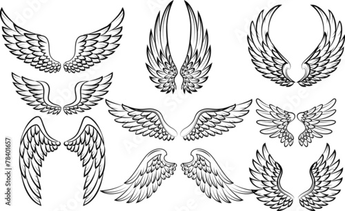 Illustration of wings collection set - 78401657