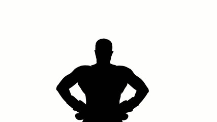 Boxer winner silhouette on white background