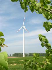 Erneuerbare Energie