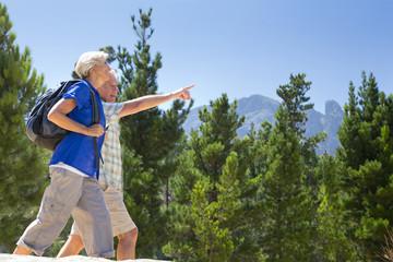 Senior couple hiking on mountain path