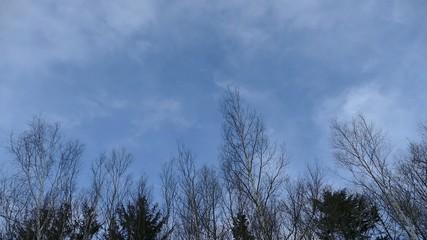 冬の空の背景用映像