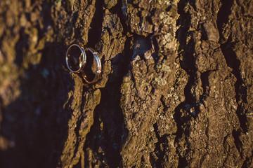 Wedding rings on the tree