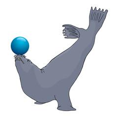 Play seal