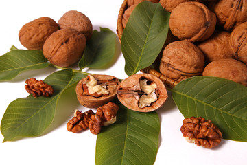 walnut surrounded by leaves on a white background