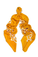 Woman scarf isolated on the white background