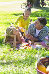 Family having a picnic in countryside