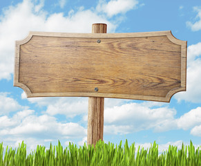 wood road sign on grass and sky background