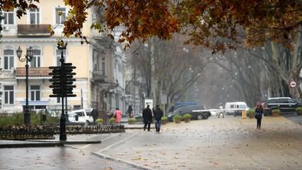 Odessa autumn