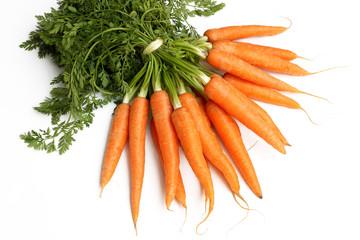 Bund Möhren, Karotten, Wurzeln