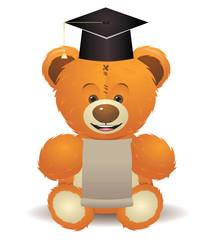 Teddy Bear in Graduation Hat