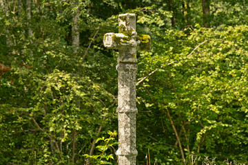 Close up Old Cross Statue at the Forest