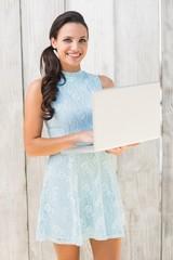 Stylish brunette using a laptop