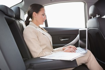 Concentrated businesswoman working in the back seat