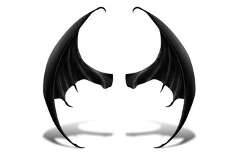 Drachen Flügel