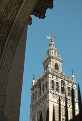 La Giralda tower detail in Seville, andalusia. Spain