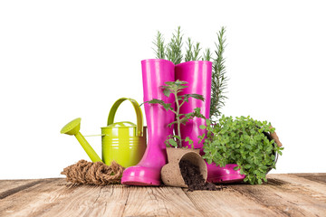 Outdoor gardening tools and herbs
