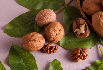 walnut surrounded by leaves