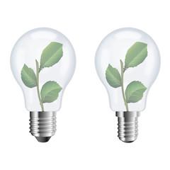 Ampoule Eco 09 sans ombre